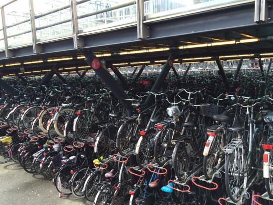 Los Canales de Leiden: Parking de Bicis en la Estación