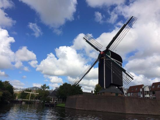 Los Canales de Leiden: Vista de un molino desde el canal