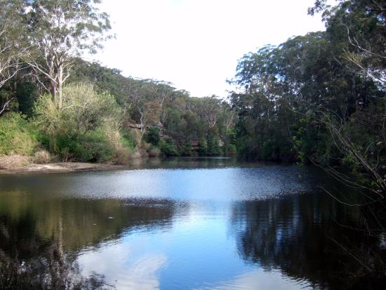‪Lane Cove National Park‬