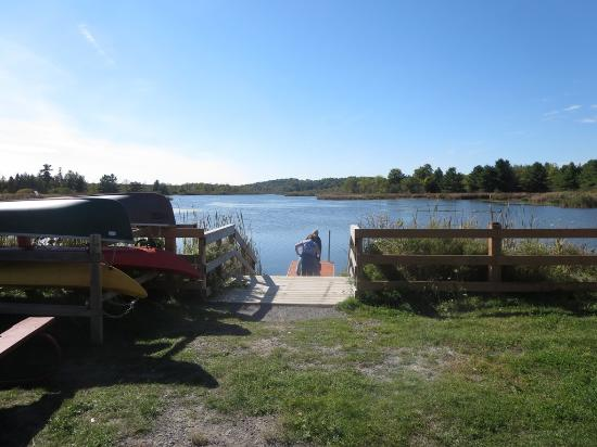 Little Cataraqui Creek Conservation Area: The dock from the walking trail