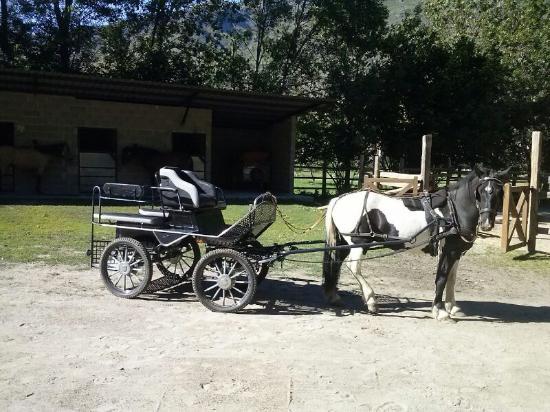 Esterri d'Aneu, Spain: Carruaje Cavalls xic