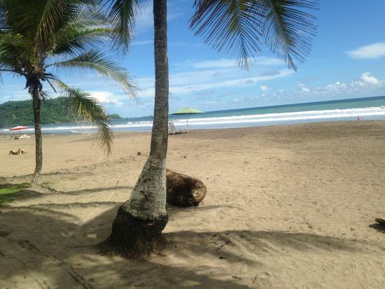 Hotel Mango Mar: Beach