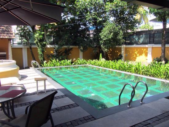 Tea Bungalow: Pool
