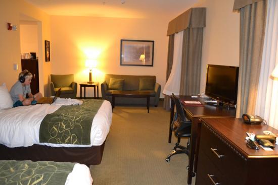 Comfort Suites Gothenburg: large room