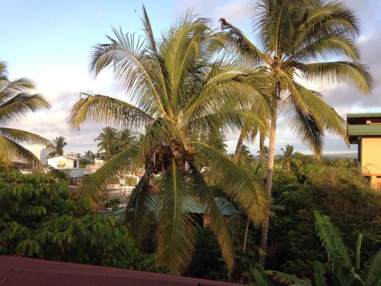 Hostal Insular: Desayuno viendo el amanecer