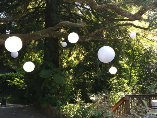 Sand Rock Farm Bed and Breakfast: Lanterns over the deck