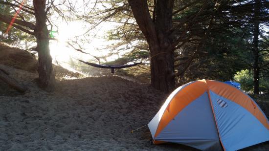 Bodega Dunes Campground: Paradise