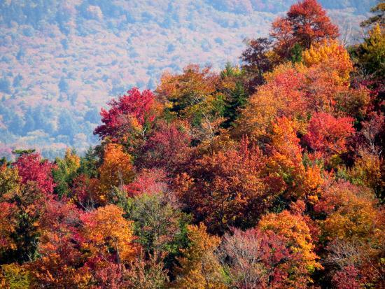 McCauley Mountain
