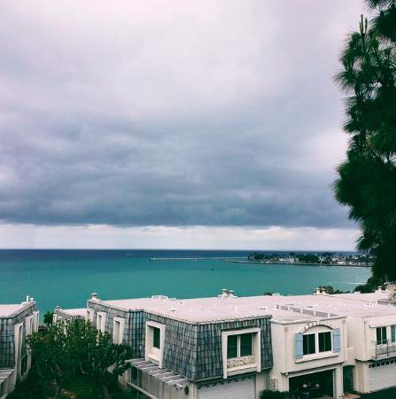 Dana Point Harbor Inn : Вид из окна