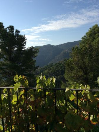 Tolox, España: One view from the Tower Suite.