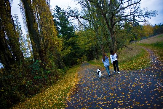 Lakewood, WA: Fort Steilacoom Park - 340 acres includes off leash dog park, a lake, playground and walking tra
