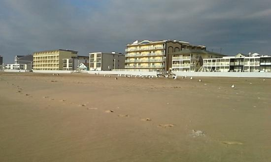 on the beach down from the hotel picture of the. Black Bedroom Furniture Sets. Home Design Ideas