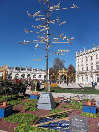Jardin ph m re place stanislas nancy 2015 photo de for Jardin ephemere 2015 nancy
