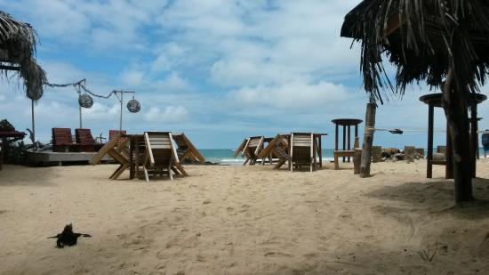 Beto's Beach Bar Hotel張圖片
