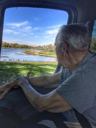 My 91 year old dad watching the geese at Riverfront Park