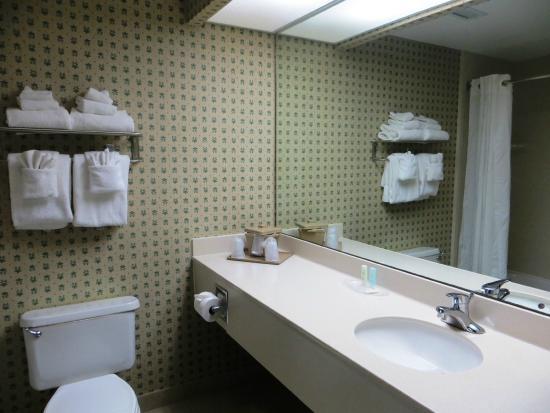 St Augustine Hotel & Suites: Guest Bathroom