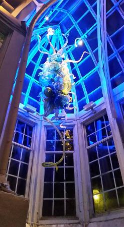 Franklin Park Conservatory Christmas Lights.Chihuly Glass Picture Of Franklin Park Conservatory And