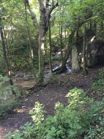 Monknash, UK: The nature reserve