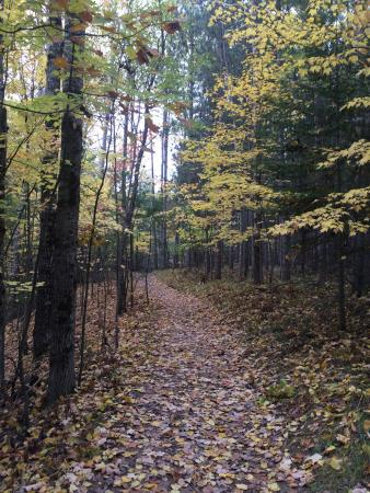 Days River Natural Trail: No matter the season, always a great trail