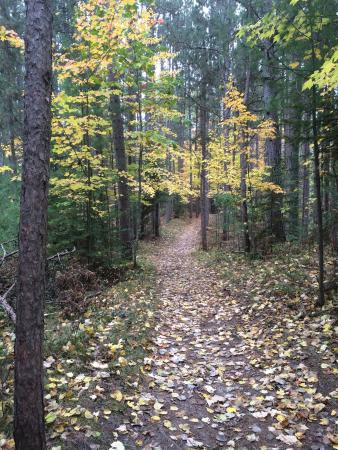 Gladstone, MI: No matter the season, always a great trail