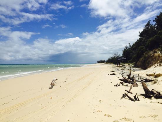 Beach - Tangalooma Island Resort Photo