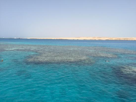 Red Sea Holidays-Day Tours