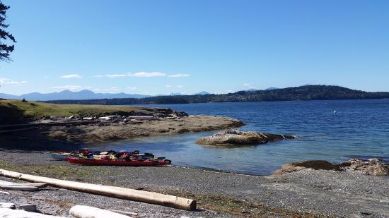 Nanaimo, Canada: Cove where we had lunch