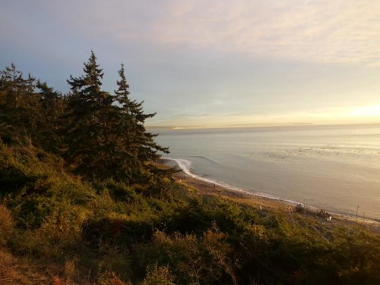 Coupeville, WA: Eby's Landing State Park  Along the hiking trail