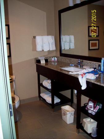 كومفرت سويتس ميلواكي ايربورت: Bathroom counter