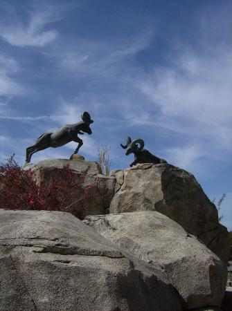 Viejas Outlet Center: Beautiful sculptures of wild animals everywhere