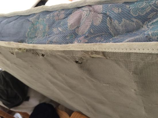 Skyline Cottages: Springs visible on underside of mattress
