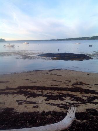 East Boothbay, ME: Beach area