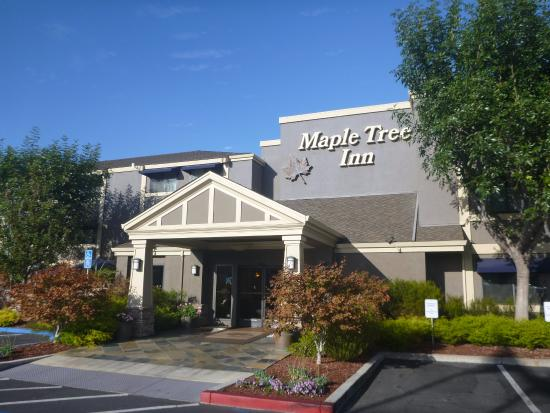 Maple Tree Inn: ホテル外観