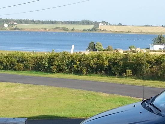 Blue Crest Cottages: blue crest cottage view