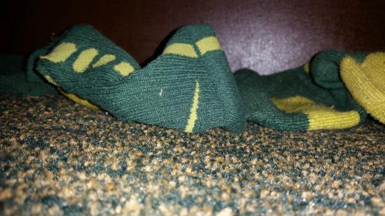 Baymont Inn & Suites Ozark: Dirty socks under the bed