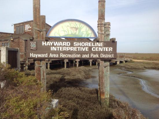 ‪Hayward Shoreline Interpretive Center‬