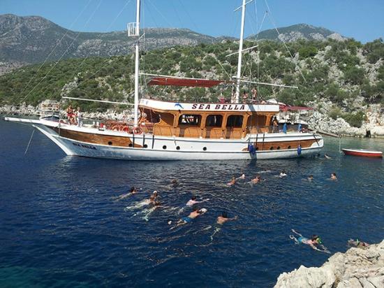 Sea Bella -Tours