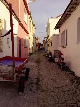 Red Basilica Hotel: otelin bulunduğu sokak