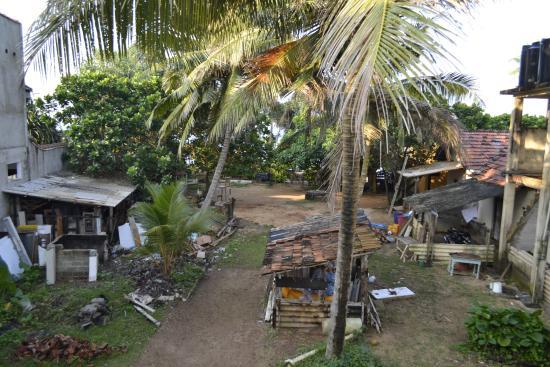 Whispering Palms Tourist Rest: Внутренний двор