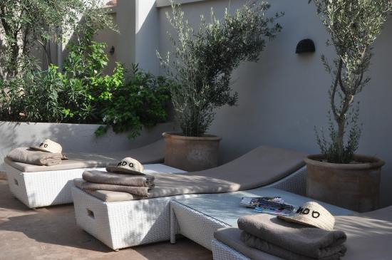 Riad O: Terrace