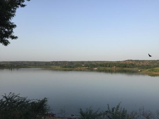 Botanix Nature Resort: Damdama Lake