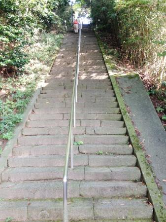 Tyokaisan-Ohmonoimi Shrine: 石段
