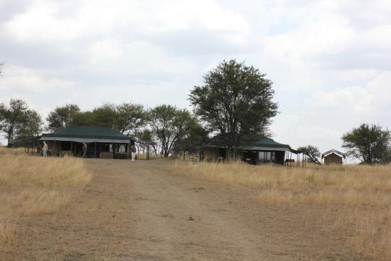 Mara Under Canvas Tented Camp: The property