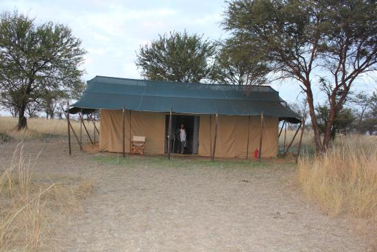 Mara Under Canvas Tented Camp: Tented accomodation