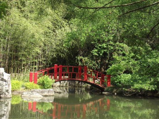 Japanese Gardens bridge - Picture of Birmingham Botanical Gardens ...
