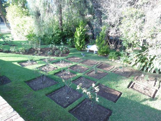 Monte Cristo Country Manor: Garden