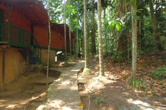 Rafters Retreat: Eco Lodge