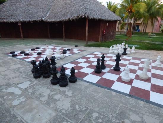 live schach