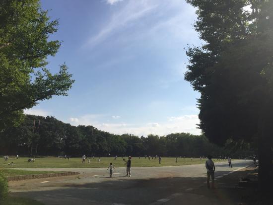 Johoku Chuo Park