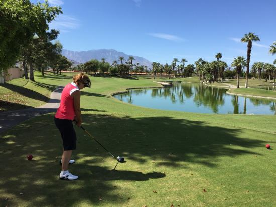 Palm and Valley Golf Courses at Desert Springs: photo2.jpg